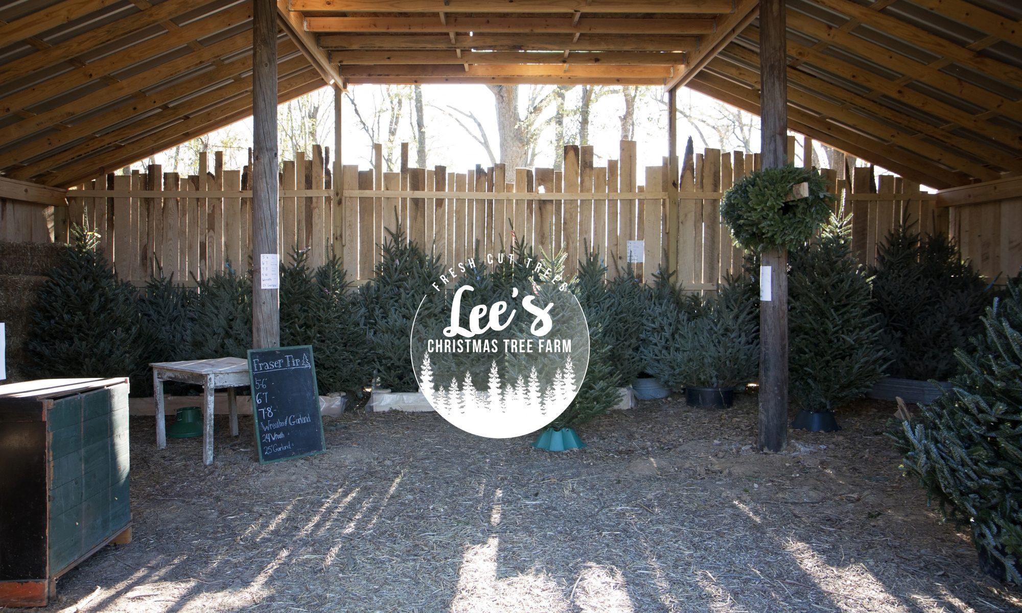 Lee's Christmas Tree Farm